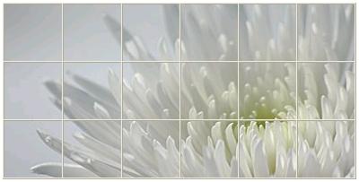 fotokakel2.jpg